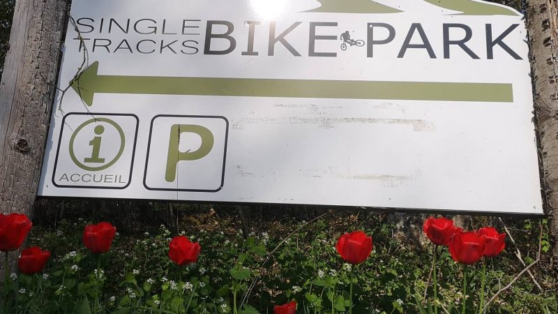 En immersion au cœur du Singletracks Bike-Park